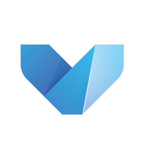 VISDOM logo